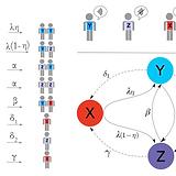 Figure adapted from Arruda et al. (2018)