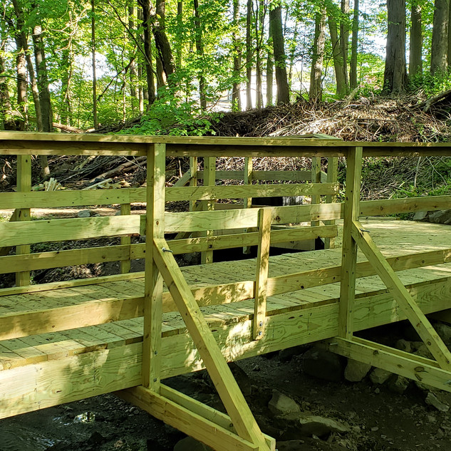 Dual bridge done