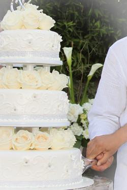 carlos and daniel wedding (201).jpg