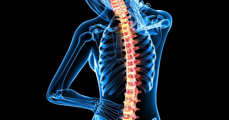 La Réflexologie Dorsale, bien plus qu'un massage du dos ...