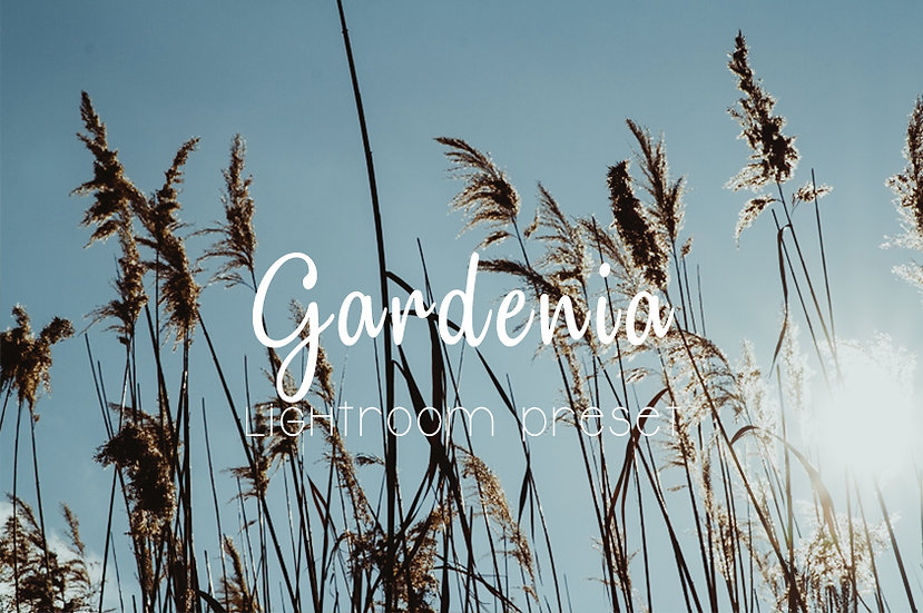 Gardenia Lightroom Preset