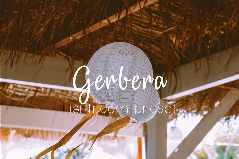 Gerbera Lightroom Preset