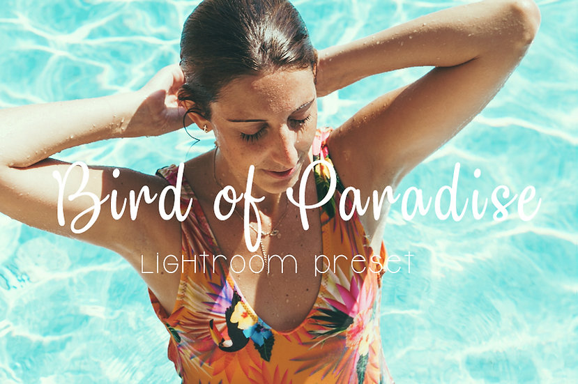 Bird of Paradise Lightroom Preset