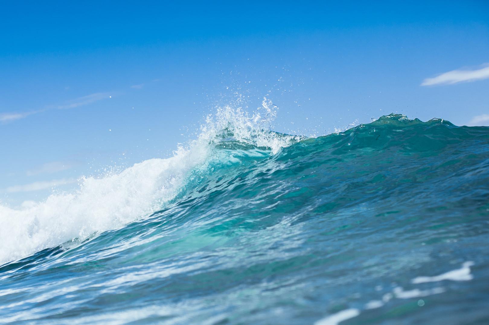 Surf-50.jpg