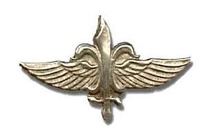"""סיירת מטכ""""ל סמל יחידה"""