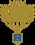 סמל אות הנשיא להתנדבות רקע שקוף.png
