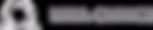 white logo - no tagline - transparent.pn