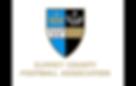 Surrey FA Logo.png