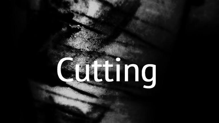 'Cutting' Book Launch