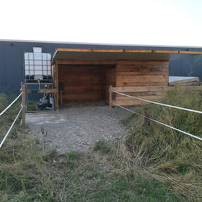 Vaillants Hütte