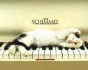 cat1_piano.jpg