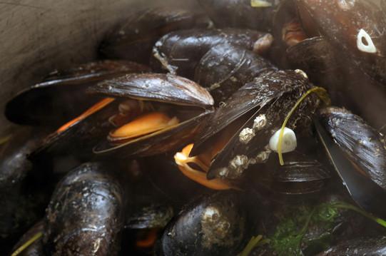 Garlic steamed mussels
