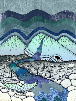 Highland Whale A4.png