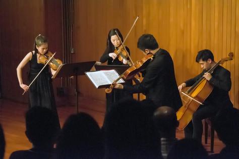Hong Kong Debut 2013