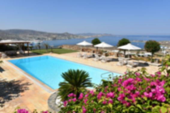 Althea villa 2 paros pool view