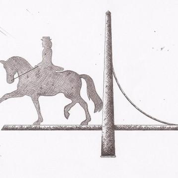 cheval-de-dressage