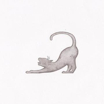 chat-qui-s'étire
