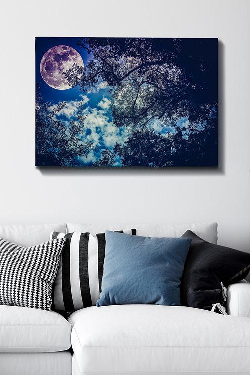 Kanvas Tablo (70 x 100) - 159