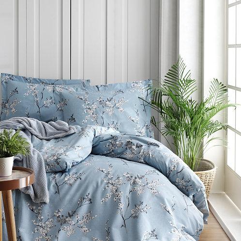 Chicory - Blue