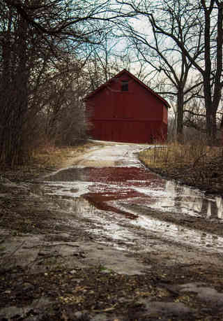Travel to the Red Barn.jpg