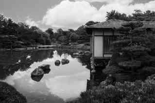 Black & White Pond