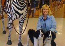 gina dogs zebra_edited