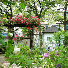 小坂の庭1.jpg