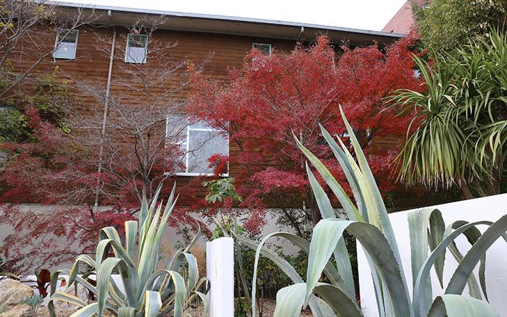 ホールセンペル ガーデンテラス