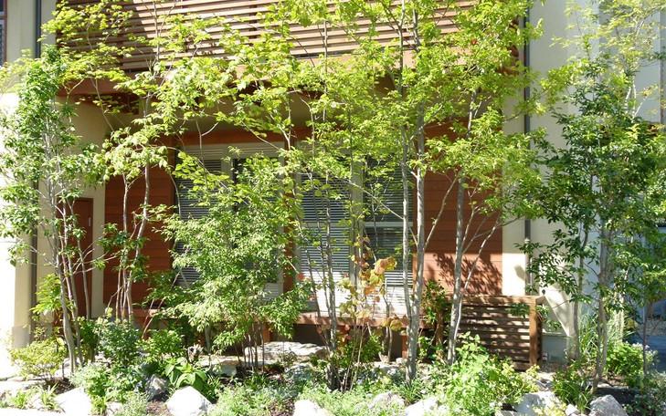 姫室町の庭