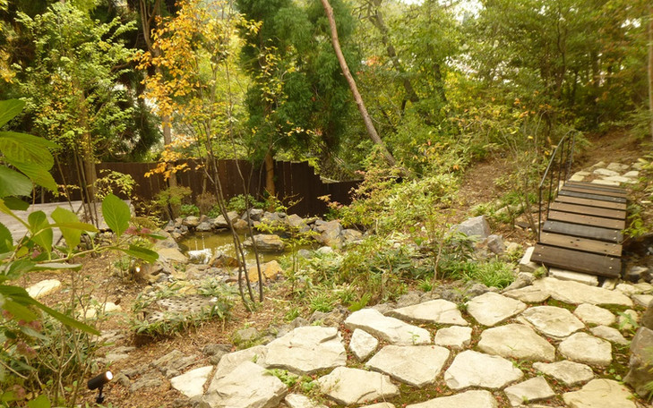 奥池の庭2