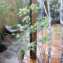 四条畷の庭1.jpg