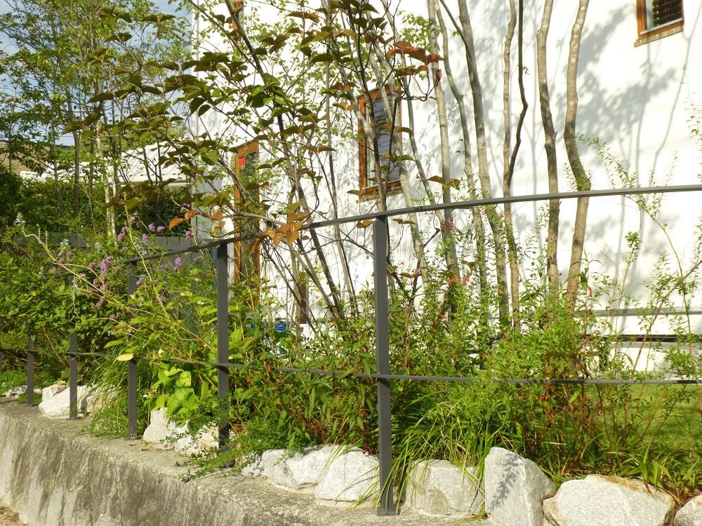 鷲林寺の庭