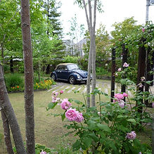 山手の庭-1.jpg