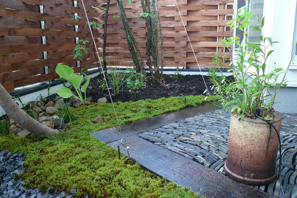 新千里の庭1