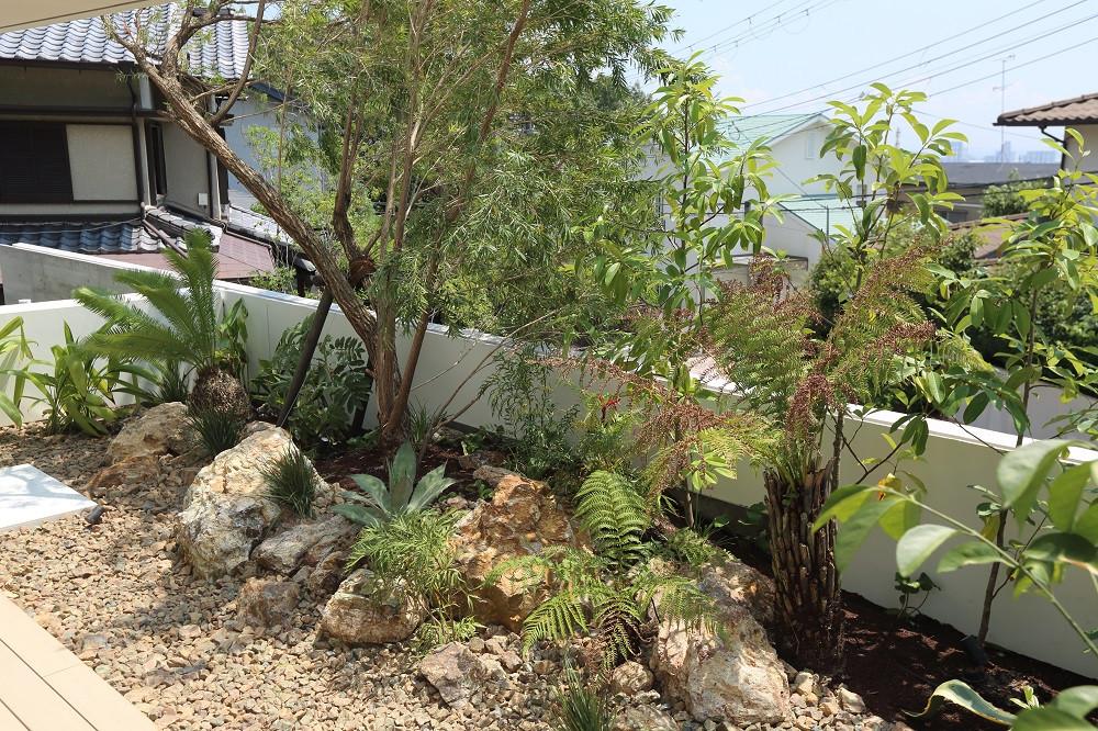 芦屋の庭9