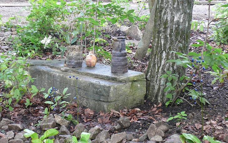 軽井沢の庭