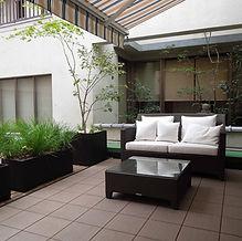 urban garden 6.JPG