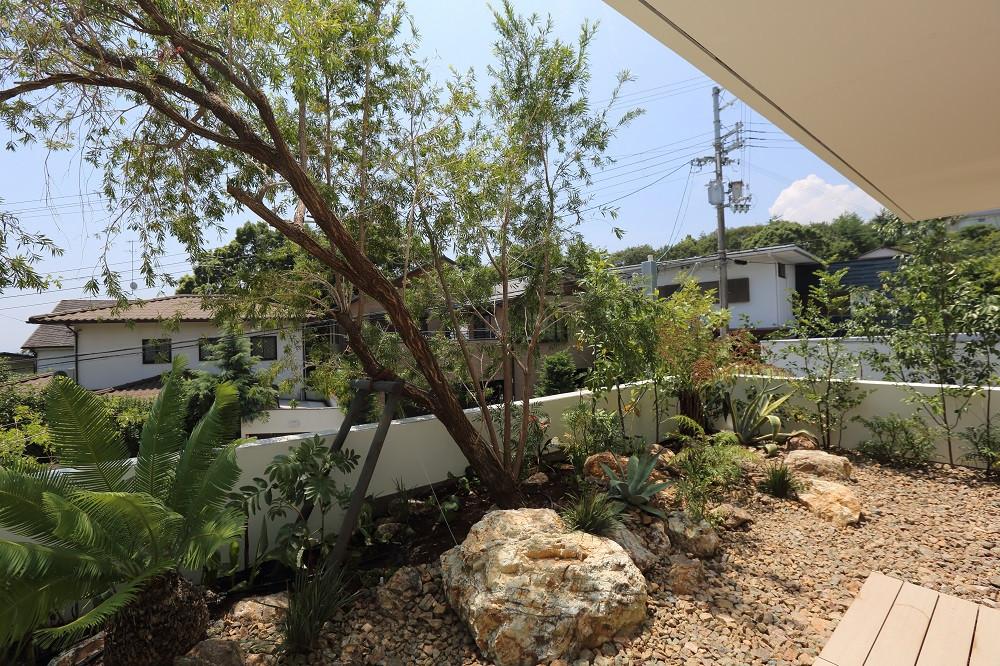 芦屋の庭5