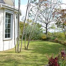 六麓荘の庭18.jpg