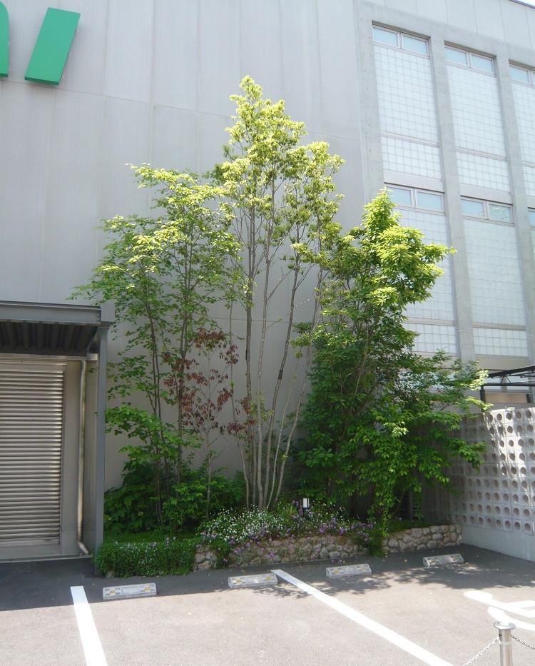 若井ホールディングス株式会社