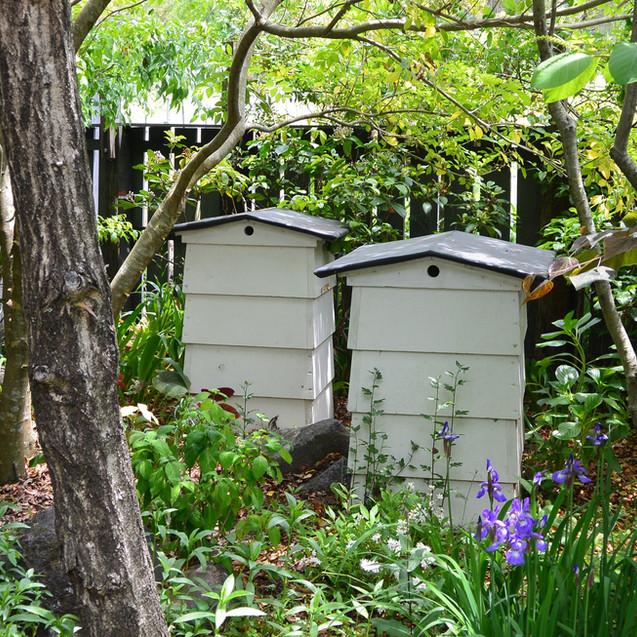 MIGIWA ミツバチの巣箱