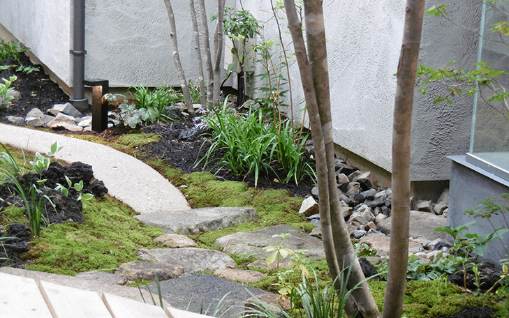 藤井寺の庭