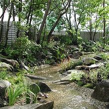 菱屋の庭1.jpg
