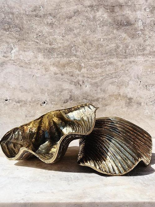 Brass clam - Vertical / Horiztonal grooves 23cm