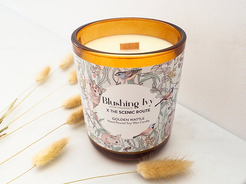 Blushing Ivy x Scenic Route - 80hr Golden Wattle candle