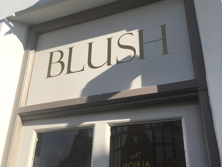 Blush Salon Update