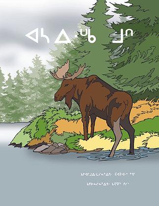 Moose Crossing - Oji-Cree Syllabics