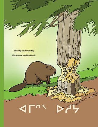 Beaver Tails - Cree