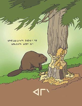 Beaver Tails - Oji-Cree Syllabics