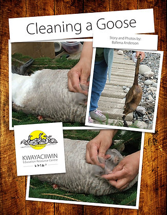 Cleaning a Goose